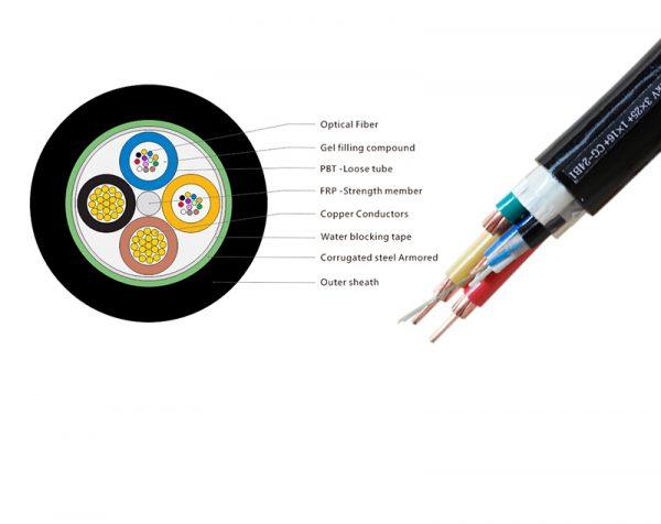 12 Core Optical Fiber (FRB)
