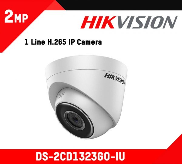 Hikvision 2 MP Build-in Mic Network Camera